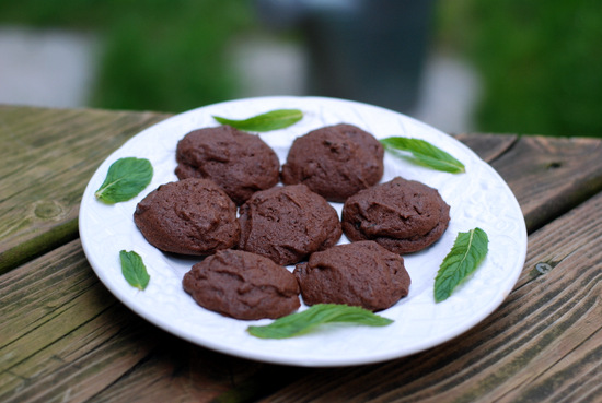 chocolate mint cookies 9